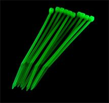 PRIMECOOLER PC-CT25100 Cable Ties 2,5x100mm UV Green (set of 10pcs)